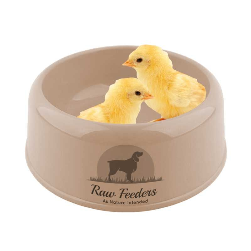 day-old-chicken-chicks-25-inc-bone-1620-p