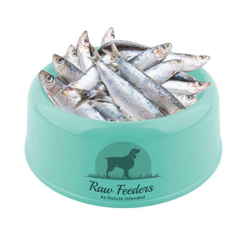 kiezebrink-sardines1kg-1511-p