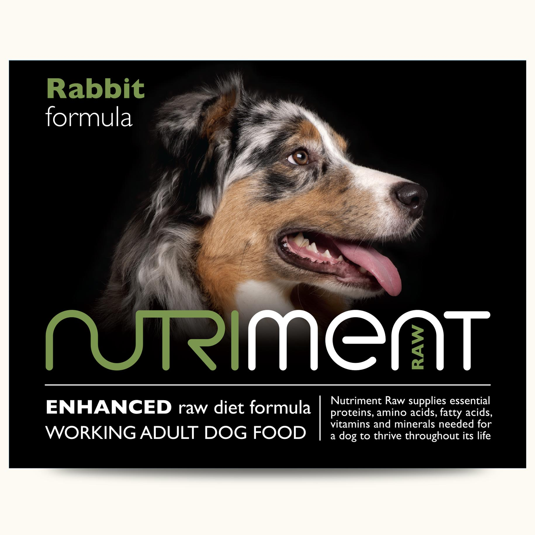 nut-rabbit