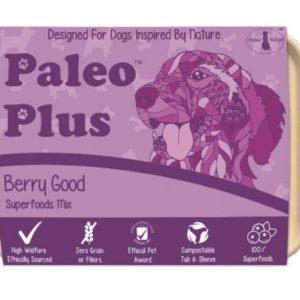 paleo-berrygood